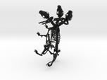 Cerberus Skeleton