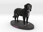Custom Dog Figurine - Lucky