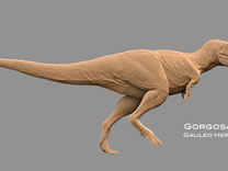 Gorgosaurus1:40 v1 in White Strong & Flexible