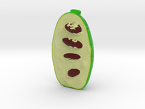 Pawpaw Christmas Ornament in Full Color Sandstone