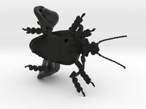 Frog-legged leaf beetle in Black Strong & Flexible