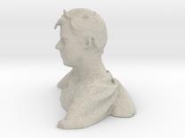 Scan Pieter-2a Cubify in Sandstone