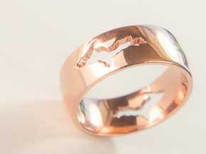 Upper Peninsula Comfort-Fit Ring  in 14k Rose Gold Plated Brass: 11 / 64