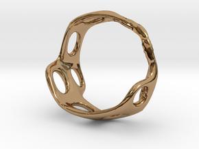 s3r025s8 GenusReticulum in Polished Brass