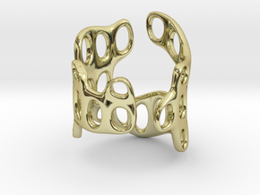 s3r029s5 GenusReticulum in 18k Gold Plated Brass