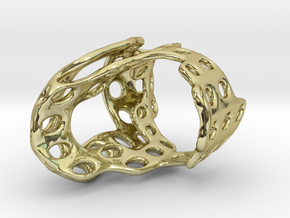 s4r011s8 GenusReticulum  in 18k Gold Plated Brass