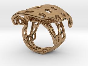 s4r014s6 GenusReticulum  in Polished Brass