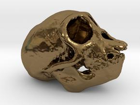Spider Monkey Skull 50mm in Polished Bronze