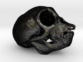 Spider Monkey Skull 50mm in Matte Black Steel