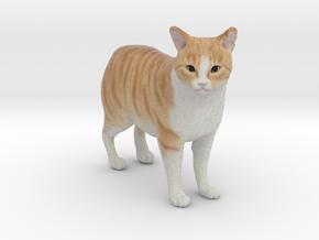 Custom Cat Figurine - Nemo in Full Color Sandstone