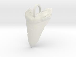 Megalodon Shark Tooth in White Natural Versatile Plastic