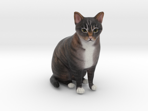 Custom Cat Figurine - Champ in Full Color Sandstone