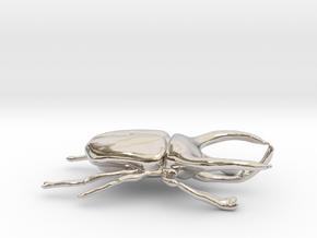 Atlas Beetle figurine/brooch in Platinum