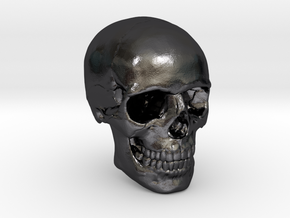 1/24  Human Skull Crane Schädel че́реп in Polished and Bronzed Black Steel