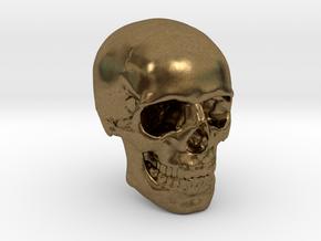 1/24  Human Skull Crane Schädel че́реп in Natural Bronze