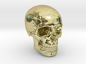 1/24  Human Skull Crane Schädel че́реп in 18k Gold