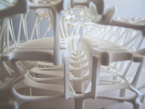 Womb of After Life Part 1 in White Natural Versatile Plastic
