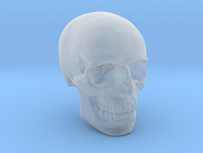 1/24  Human Skull Crane Schädel че́реп in Smooth Fine Detail Plastic