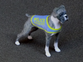 Police Boxer in Full Color Sandstone