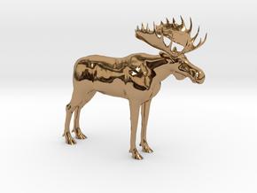 LindaBakkeProductions-Storelgen-5cm in Polished Brass