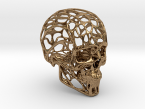 Human Skull - Wireframe design in Natural Brass