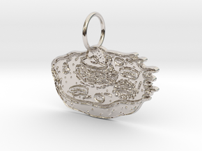 Animal Cell Pendant in Rhodium Plated Brass