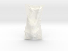 Shroud shape penholder 002 in White Processed Versatile Plastic