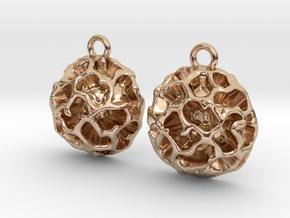 Fossil Acritarch Cymatiosphaera Earrings in 14k Rose Gold