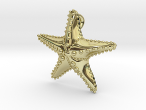 Starfish in 18k Gold Plated Brass