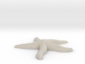 Starfish  in Natural Sandstone