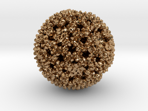 Reovirus in Polished Brass