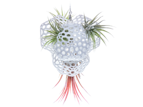 Radiolaria Tetrahedra Planter in White Strong & Flexible