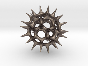 Acrosphaera (Radiolaria) in Polished Bronzed Silver Steel