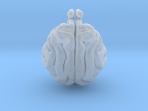 Cat Brain in Smoothest Fine Detail Plastic