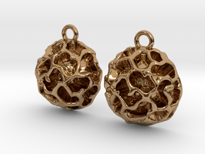 Fossil Acritarch Cymatiosphaera Earrings in Polished Brass