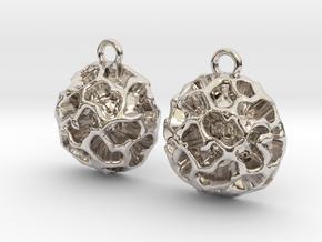 Fossil Acritarch Cymatiosphaera Earrings in Rhodium Plated Brass