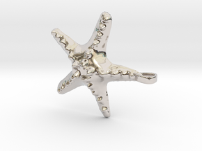 Sea Star Necklace in Rhodium Plated Brass