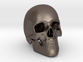 Human Skull in Polished Bronzed Silver Steel