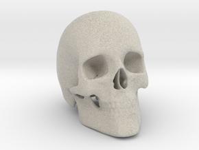 Human Skull in Natural Sandstone
