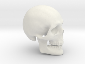 Skull Real in White Natural Versatile Plastic
