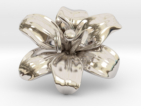 Lily Flower 1 - M in Rhodium Plated Brass