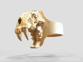 Sabretooth Ring size 9.8/5 (diam 19.5mm) in Polished Gold Steel