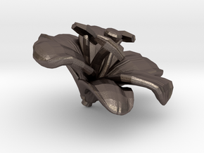 Lily Flower Rock 1 - M in Polished Bronzed Silver Steel