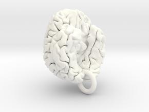 Human brain in White Processed Versatile Plastic