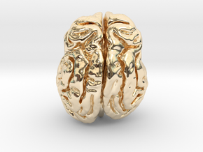 Leopard brain in 14K Yellow Gold