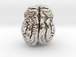 Leopard brain in Rhodium Plated Brass