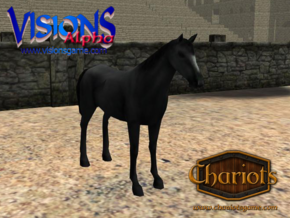Horse Black in Full Color Sandstone