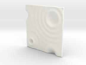 Zen Garden ( Sushi plate ) in White Processed Versatile Plastic