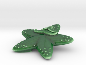 Indian hipster starfish Porcelain in Gloss Oribe Green Porcelain