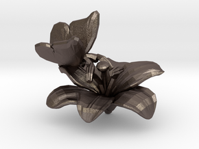 Butterfly And Lily Flower 1 Rock - S in Polished Bronzed Silver Steel